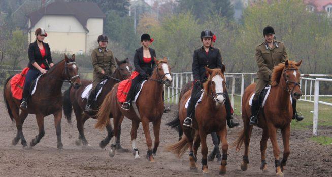 Technik hodowca koni – po gimnazjum