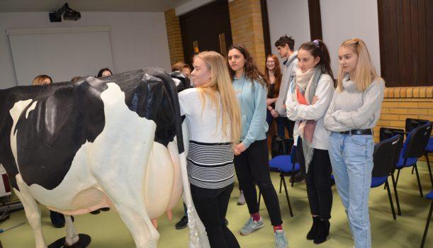 Zajęcia praktyczne dla uczniów Technikum Hodowli Koni na SGGW